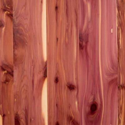 Cedar, Aromatic